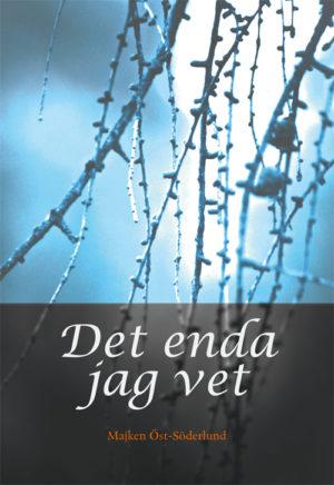 Det enda jag vet - Öst-Söderlund' Majken - Artos & Norma Bokförlag